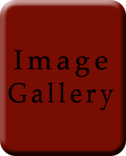 ImageGalery