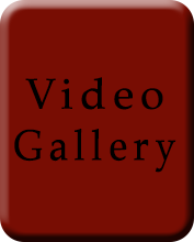 VideoGallery